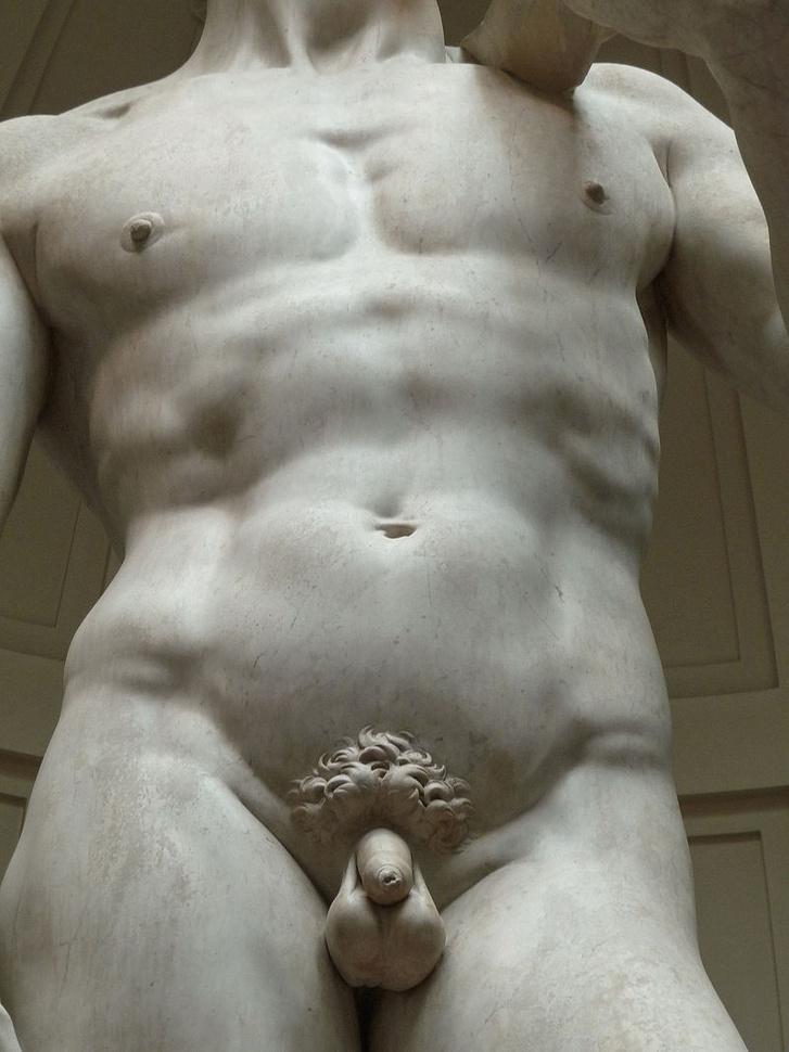 pénisz ember