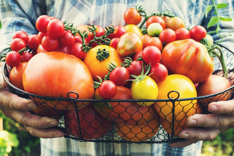 zöldségek és gyümölcsök a pénisz növekedéséhez