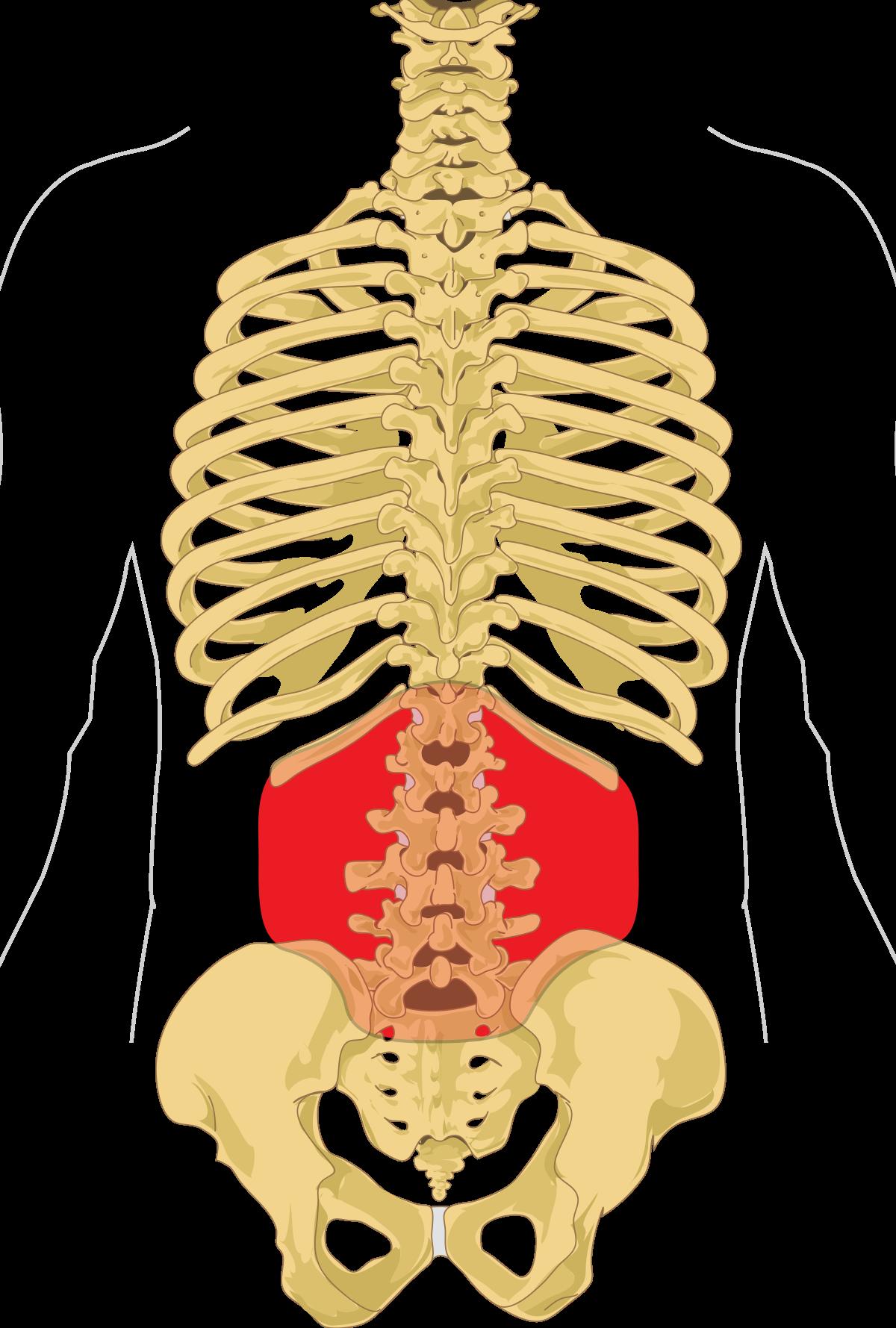 pénisz stimuláció egy hatása az erekciós pontokra