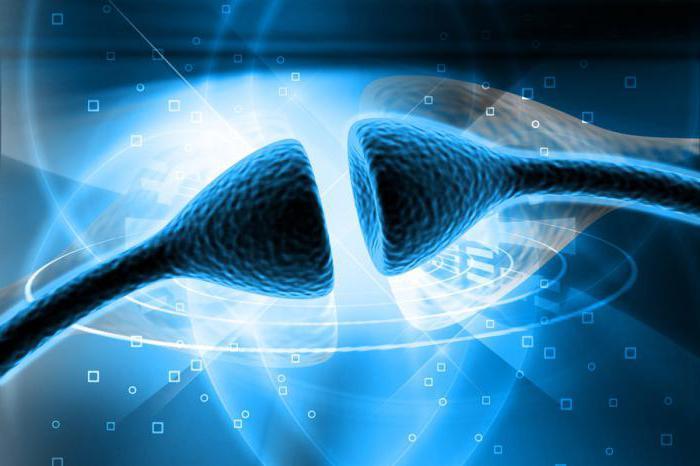 A nyaki idegrendszeri tünetek elakadása
