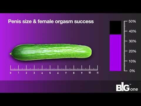 minden péniszméret adat