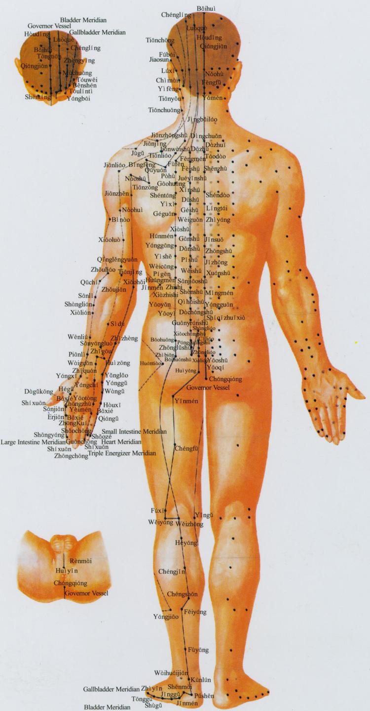 akupunktúra és merevedés