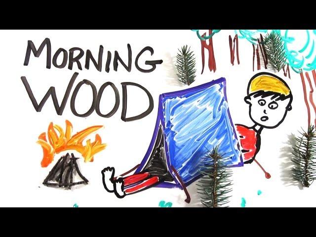 nincs merevedés reggel mit kell csinálni)