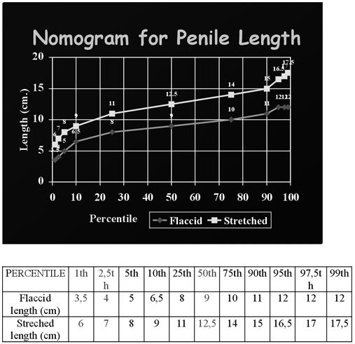 átlagos péniszméret és átlagos átmérő