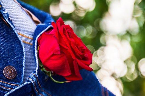 Virág és Rózsa - Mind a két pénisz hasonló méretű és | Facebook