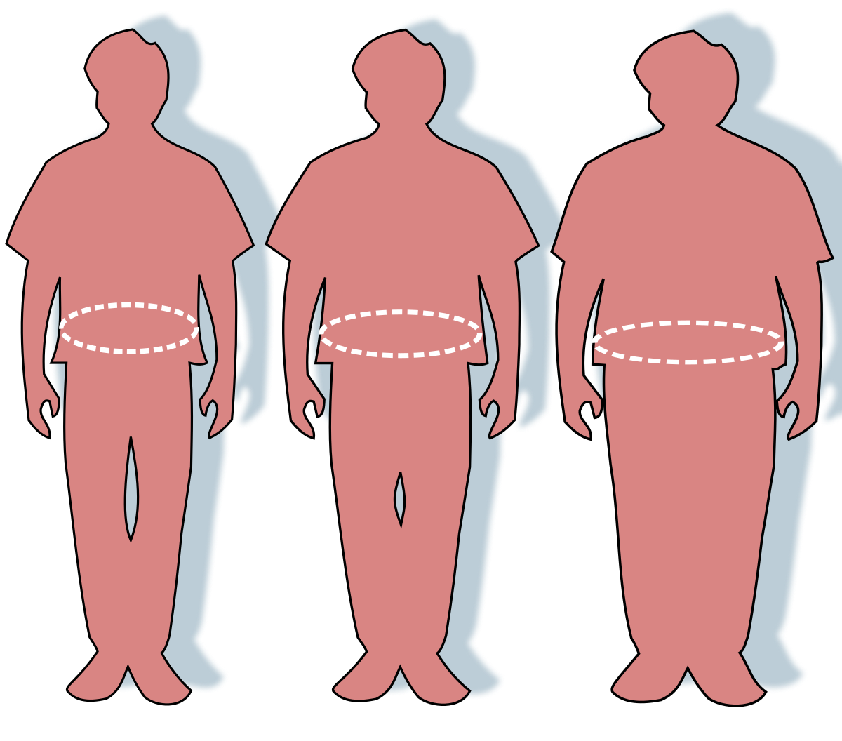 mi az elhízott férfiak pénisze