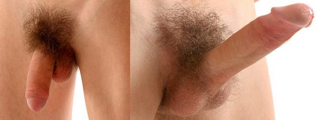péniszérzékenység az erekció során