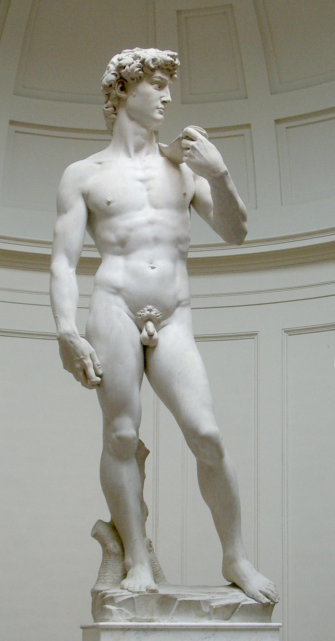 mi a pénisz normája egy férfinak)