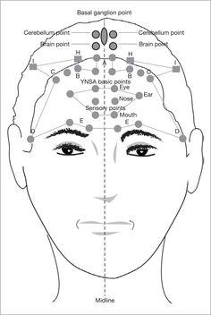 akupunktúrás erekciós pont)