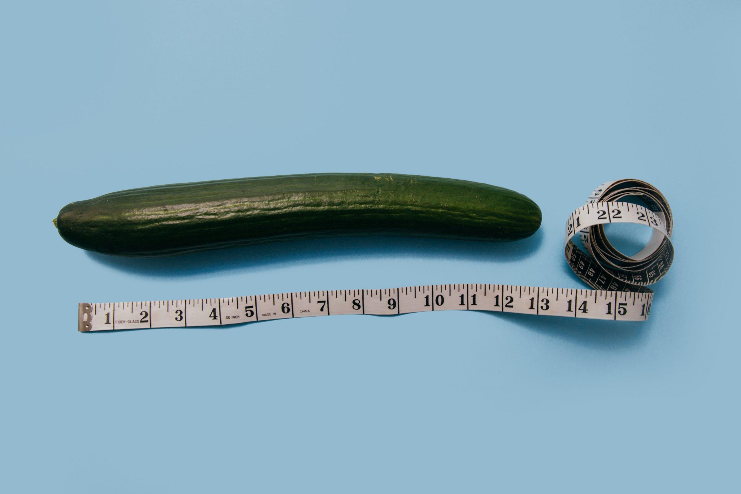 milyen hosszúságú és vastagságú péniszek vannak