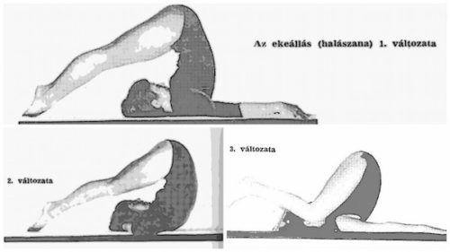jóga gyakorlat az erekció fokozására