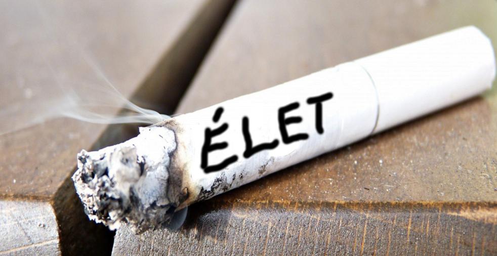 cigaretta és erekció)