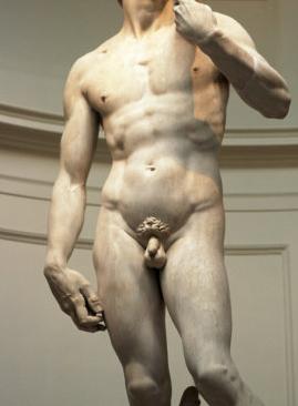 mi a férfiaknál a leghosszabb pénisz